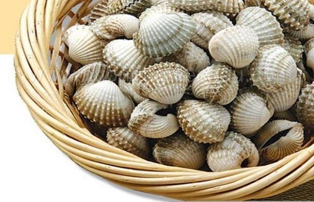 sò huyết được đánh giá là món ăn ngon, là bài thuốc hữu hiệu trong dân gian Việt Nam.