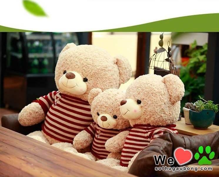Teddy Johnny Áo Len