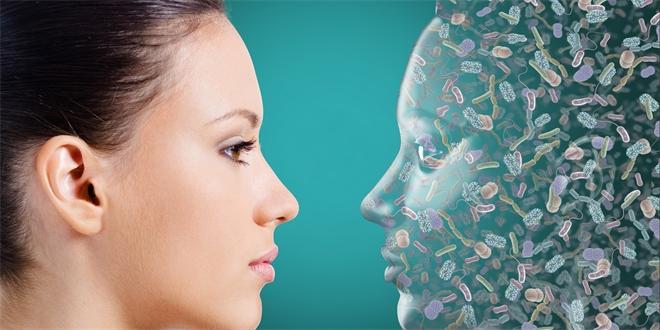 Số vi khuẩn trên người bạn nhiều hơn cả số tế bào bạn có