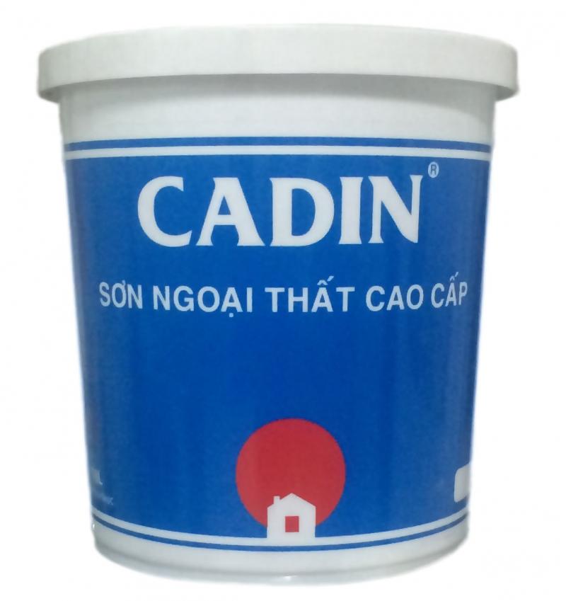 Sơn Cadin