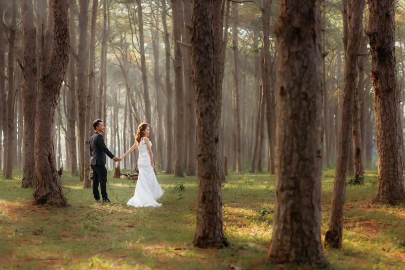 Son Studio - Photography Wedding
