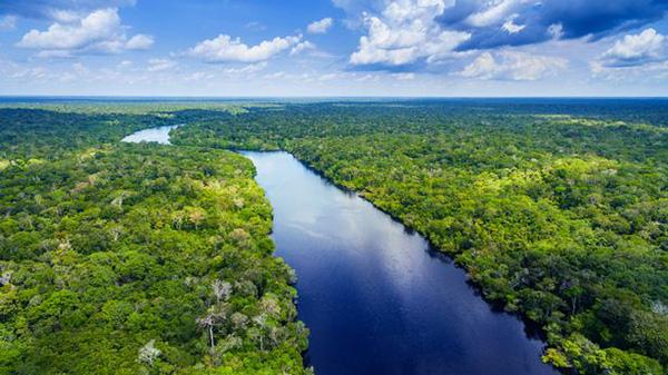 Sông Amazon, Nam Mỹ