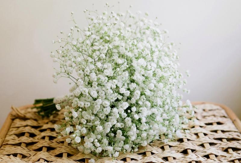 Gửi hoa mà Song Ngư yêu thích đến nơi làm việc không phải là ý kiến tồi (Nguồn: Sưu tầm)