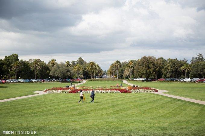 Sân cỏ Trường đại học Standford