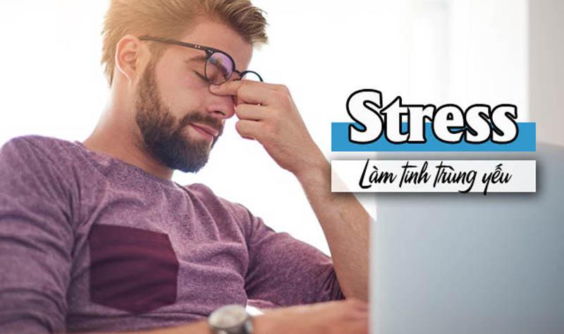 Stress thường xuyên khiến tinh trùng yếu