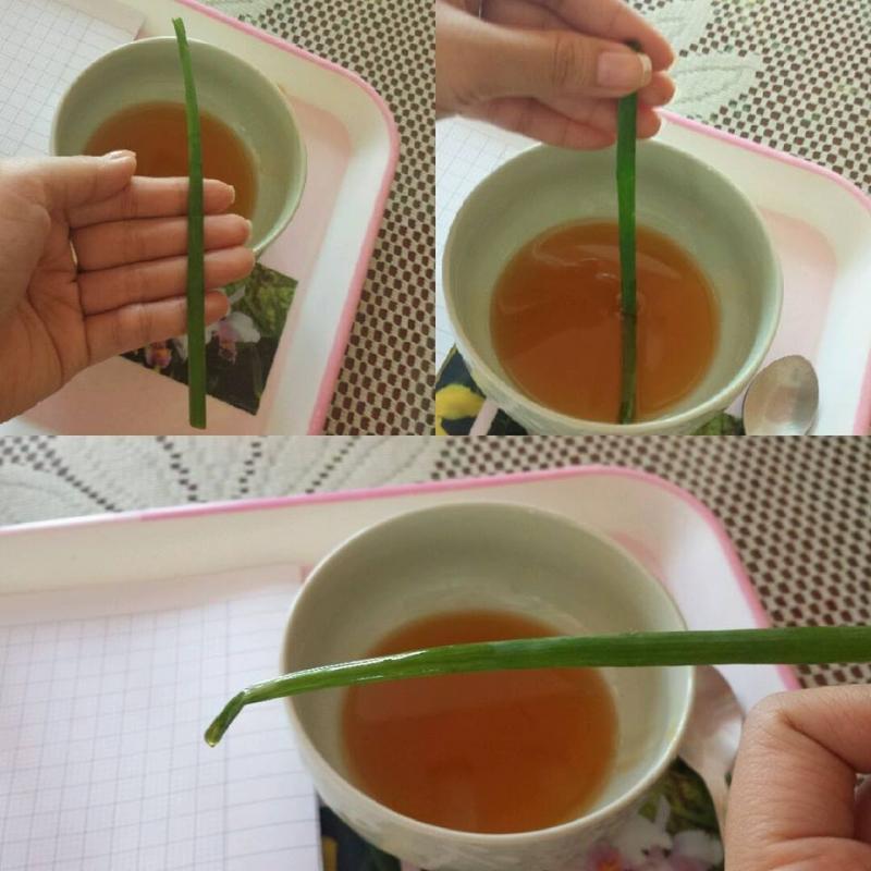 Sử dụng cọng hành (tỏi, cần tây) tươi để nhận biết mật ong ngon.