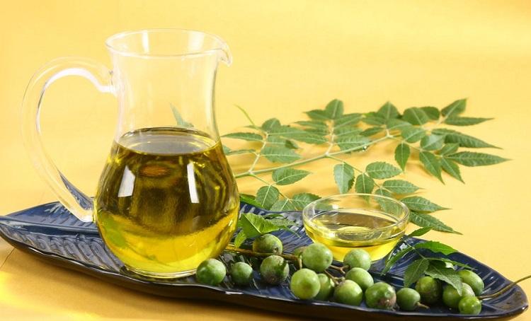 Sử dụng dầu neem là một cách an toàn để loại bỏ mối mọt,