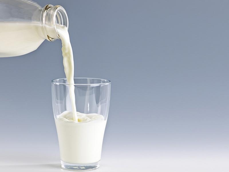 Giảm cân nhờ uống sữa hàng ngày
