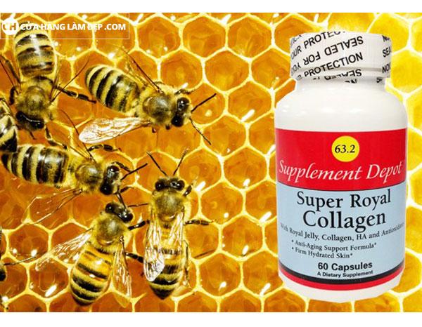 Sữa ong chúa Super Royal Collagen 63.2 với nhiều loại vitamin và khoáng chất giúp cơ thể khỏe mạnh, chống mệt mỏi, tăng cường sinh lực không những vậy còn giúp chống lại quá trình lão hóa sớm, mang lại làn da mịn màng cho chị em phụ nữ.