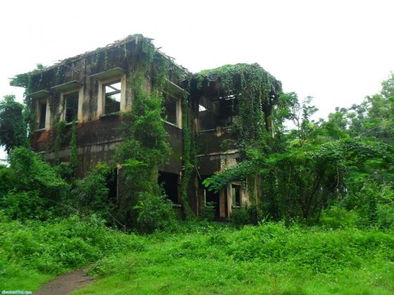 Ngôi nhà rêu phong cổ kính