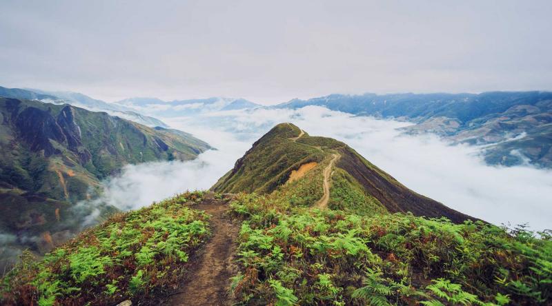 Biển mây Tà Xùa mờ ảo, là địa điểm check in siêu lý tưởng