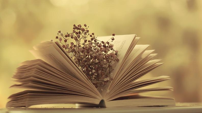 Top 18 Tác phẩm văn học nổi tiếng nhất thế giới bạn không thể bỏ qua