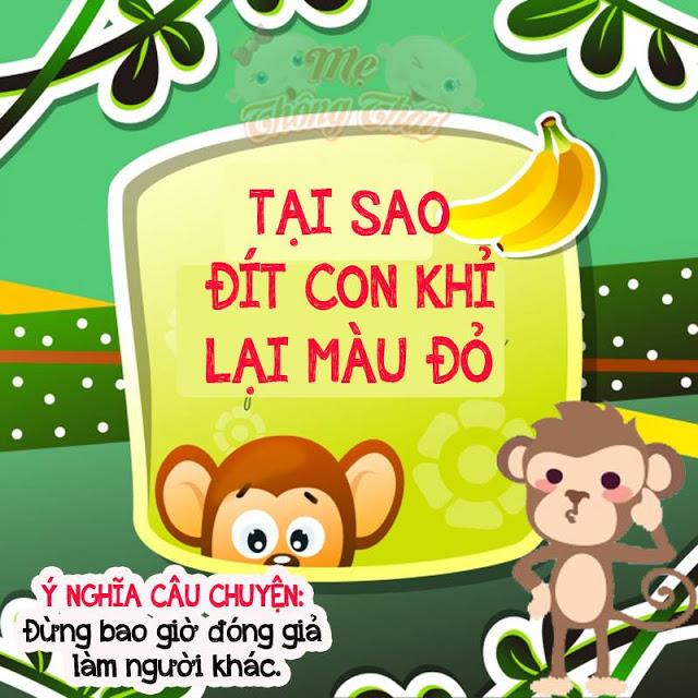 Tại sao đít khỉ lại có màu đỏ