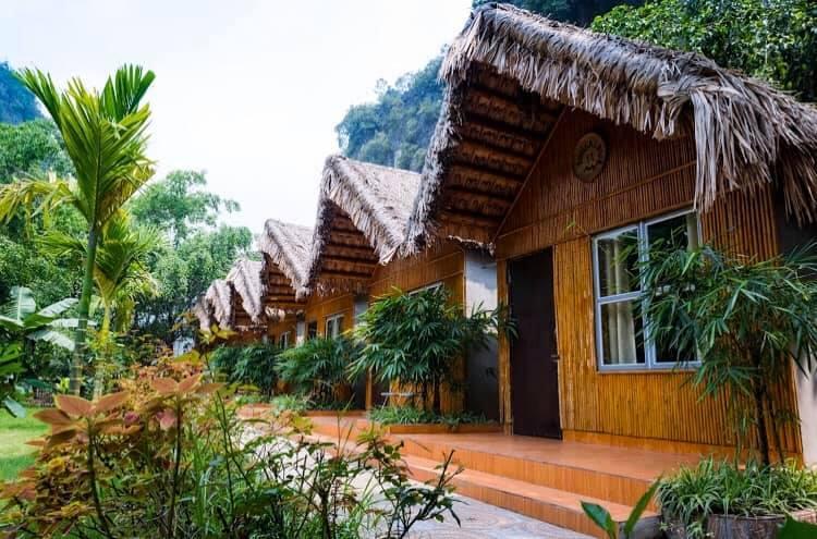 Những căn nhà mái có vẻ ngoài giống như những túp liều bằng lá khô, tựa như ngôi làng của người thổ dân, đó chính là những từ khóa khi nhắc đến địa chỉ Tam Coc Bungalow.
