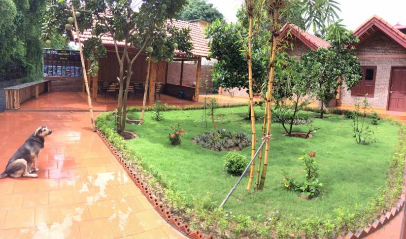 Đặc trưng của địa chỉ homestay này chính là rất nhiều cây xanh và không gian sân vườn.