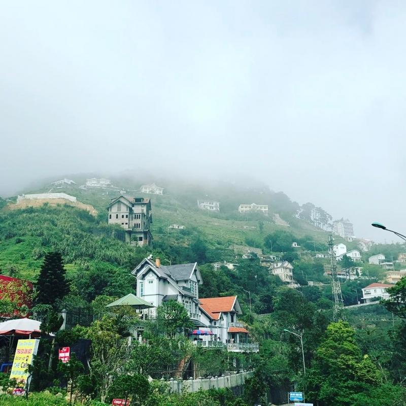 Tam Đảo