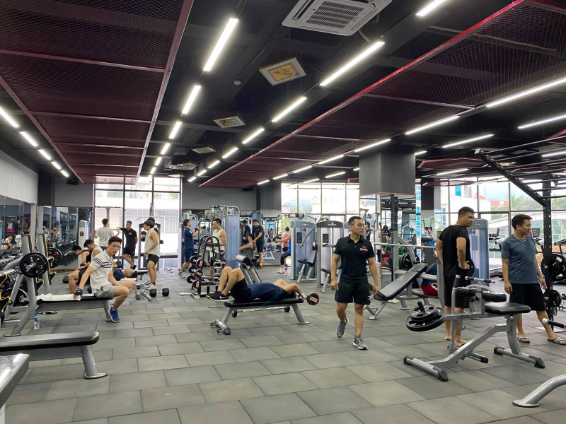 Top 5 trung tâm dạy gym uy tín nhất tại Hoà Bình