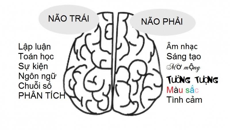 Tận dụng cả 2 bán cầu não.