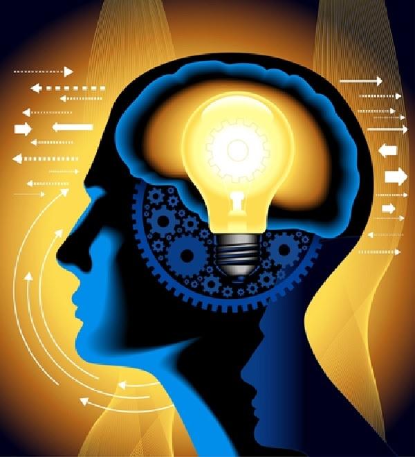 Hồng sâm giúp tăng cường hoạt động trí não