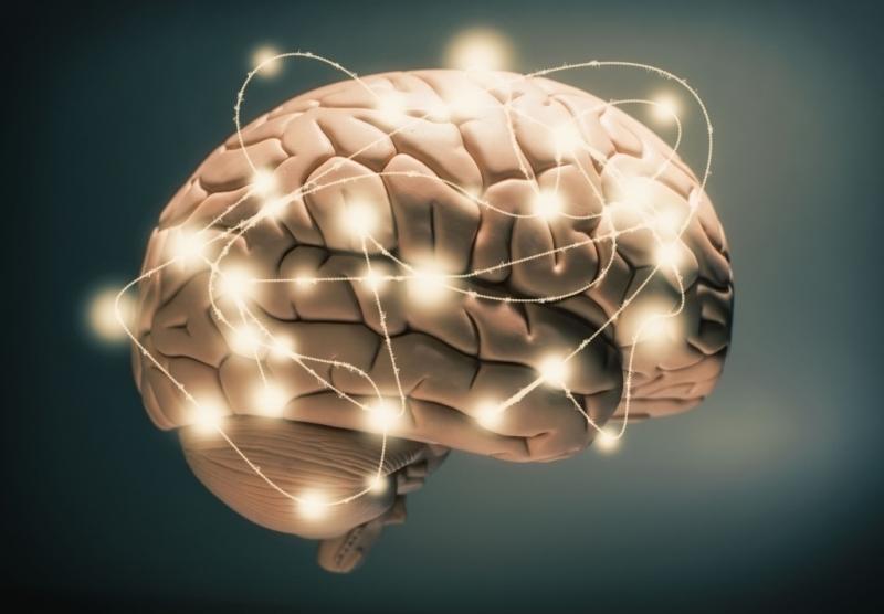 Tăng cường sự hoạt động của não bộ