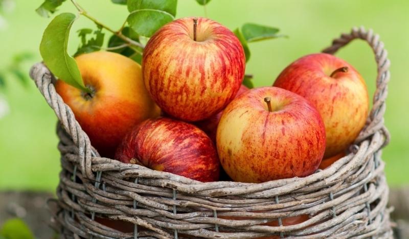 Trong thực đơn tráng miệng mỗi ngày nên cho táo vào nếu bạn hiện đang mắc chứng bệnh khó ngủ.