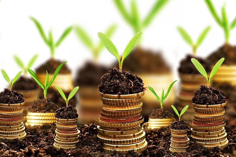 Hãy luôn tìm thêm cho mình những công việc hỗ trợ mới vừa giúp không lãng phí thời gian vừa giúp tăng thêm khoản tiền lời tài chính.