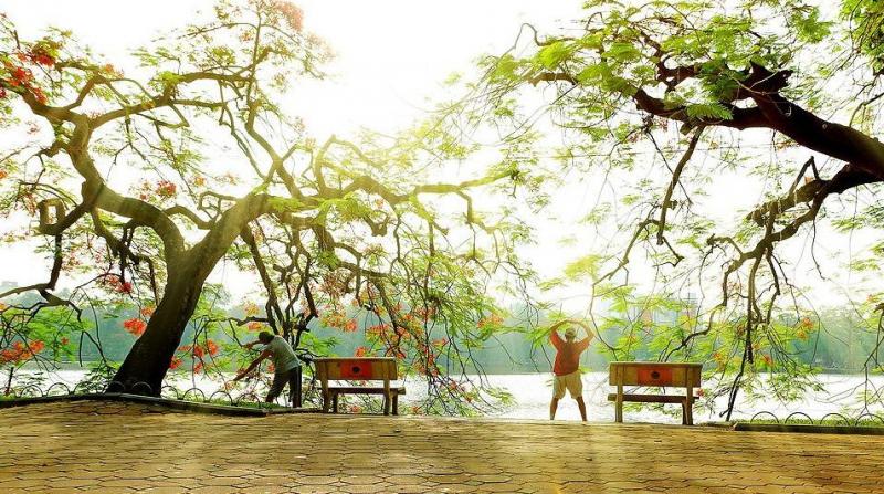 Sớm tinh mơ, khi mặt trời chỉ vừa tỏa sáng, thì các cô các chú, bạn trẻ đã náo nức cùng nhau ra bờ Hồ tập thể dục.