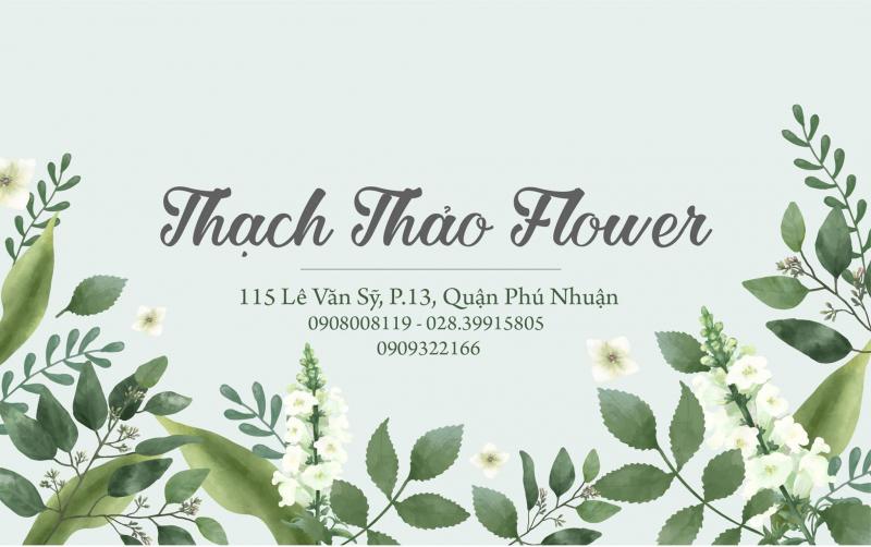 Thạch Thảo Flower