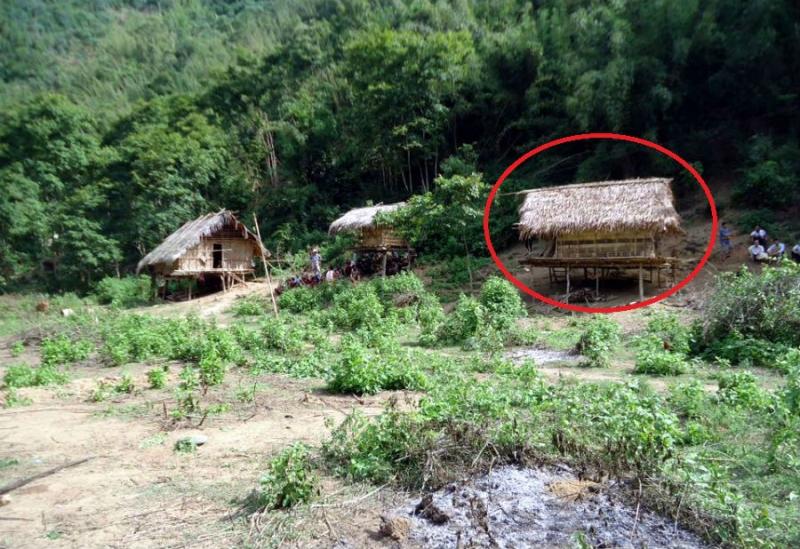 Thảm sát ở Nghệ An: Cả gia đình bị sát hại trong rừng