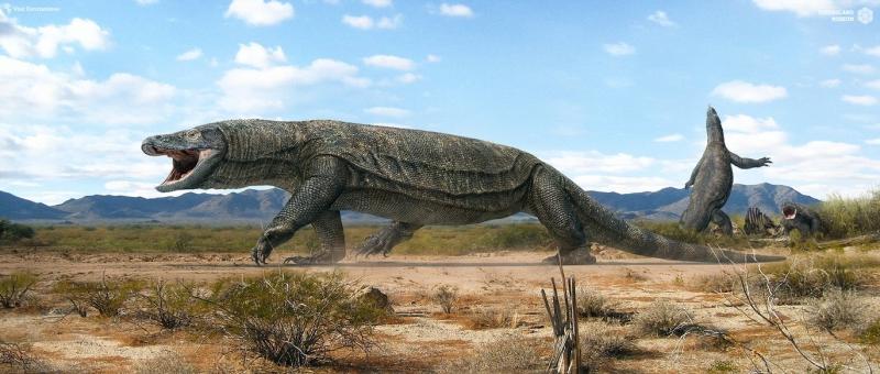 Thằn Lằn Khổng Lồ là những kẻ thống trị nguy hiểm tại Châu Úc cách đây 50.000 năm về trước, cùng thời điểm với loài người sống tại đây.