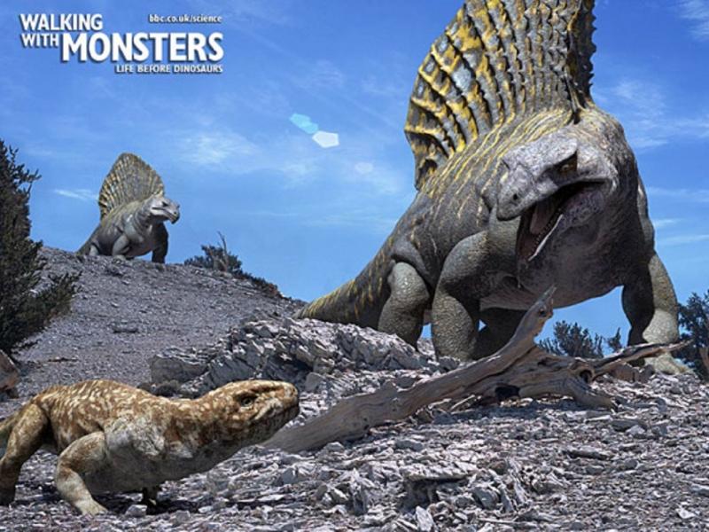 Một kẻ săn mồi vô cùng nguy hiểm với ưu thế về tốc độ và tuyến độc chết người.