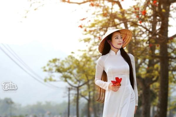 Tháng 3: Hoa Gạo - Cẩm Tú Cầu