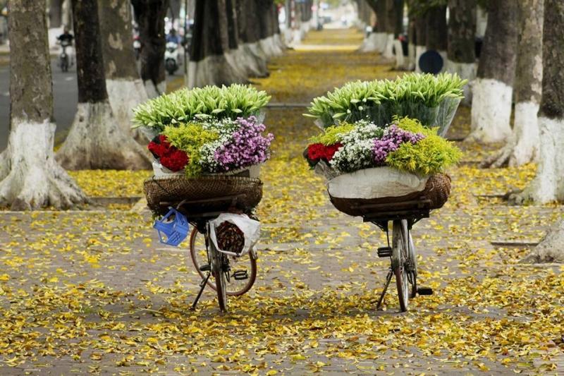 Gánh hàng hoa buổi sớm
