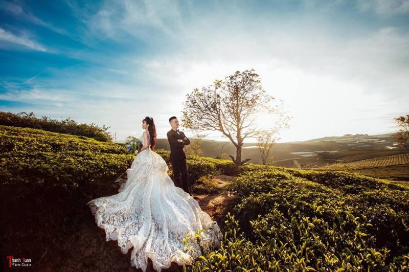 Ảnh cưới ở Thanh Tuan Studio