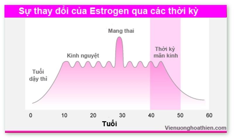 Nội tiết tố cụ thể là lượng estrogen tăng cao là nguyên nhân phổ biến của trầm cảm
