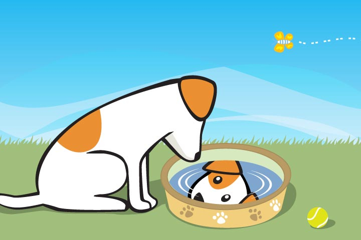The Dog At The Well