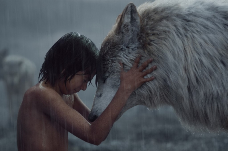 The Jungle Book (Disney) - 940,6 triệu USD