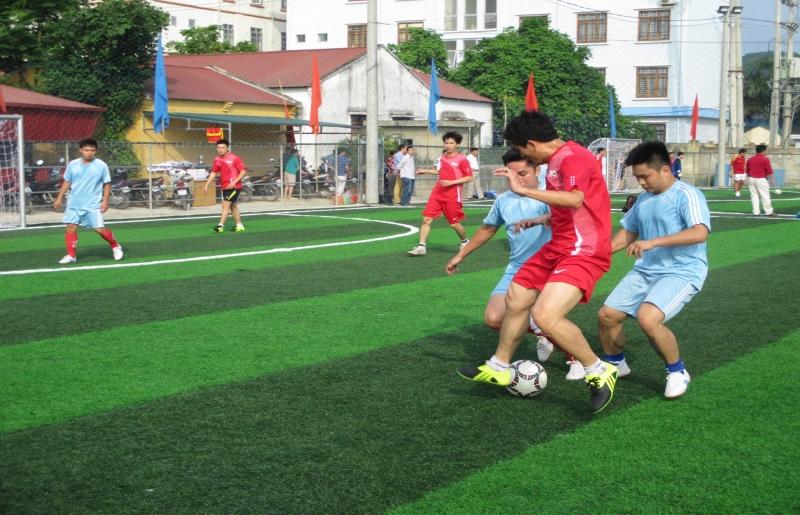 Thể thao: phòng tập gym, sân đá banh,...