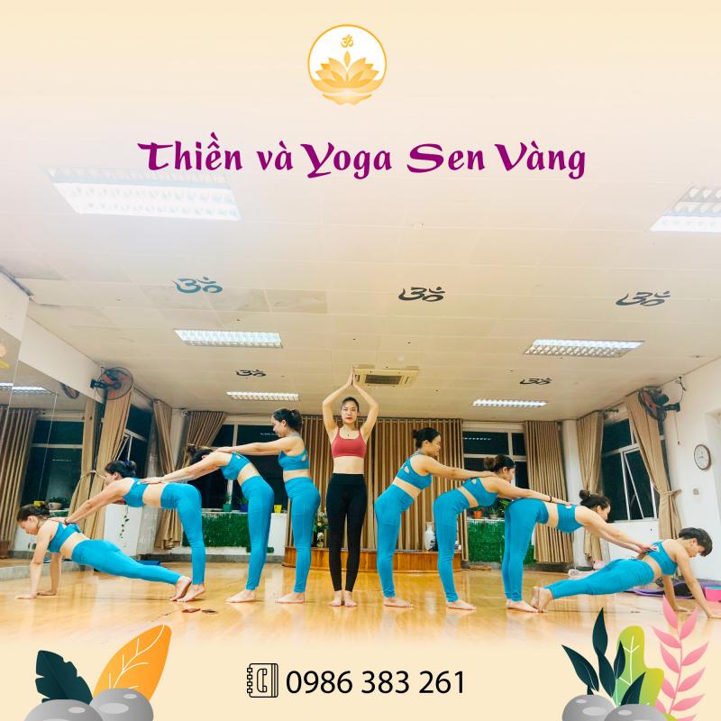 Thiền và Yoga Sen Vàng Việt Trì