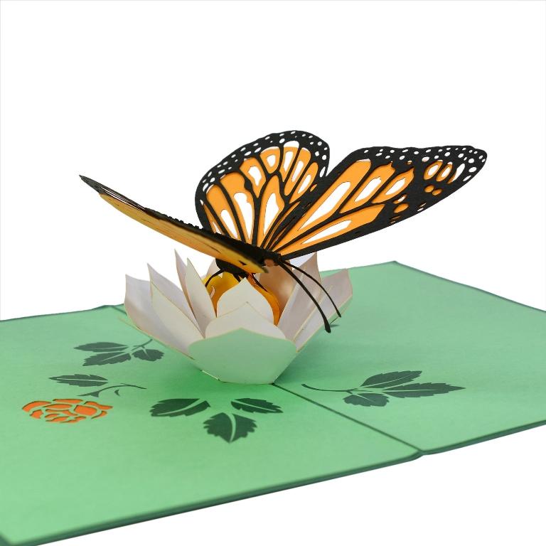 Thiệp bướm xinh