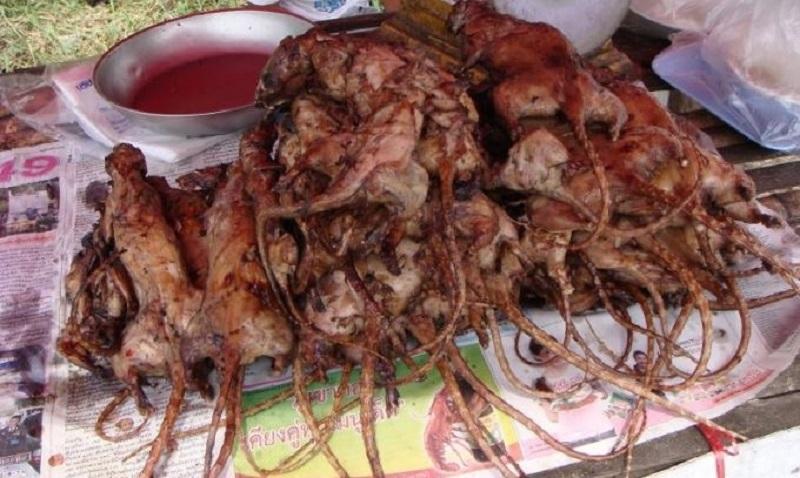 Thịt chuột