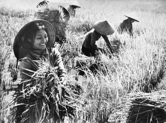 Hình ảnh những người phụ nữ Việt Nam đã in vào lòng mỗi người từ bao đời nay