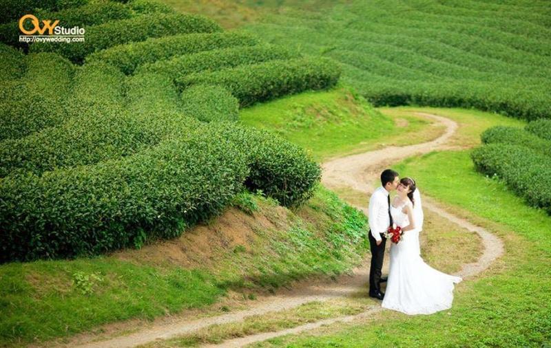 Thời trang cưới OVY