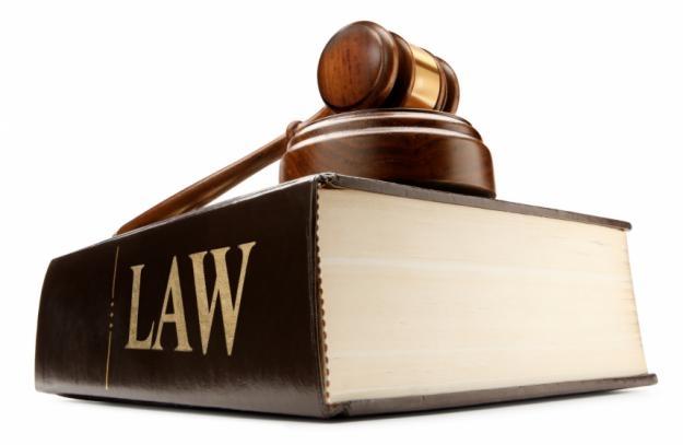 Vì phải đọc những cuốn sách Luật nên các cô gái có tư duy logic thông minh