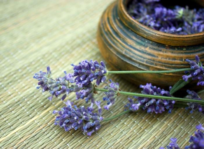 Hãy thử mùi hương thơm mới để giúp tăng trí thông minh