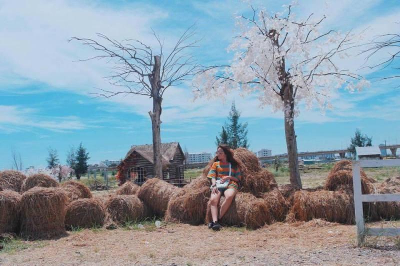 Đến với Thuận Phước Field bạn sẽ dễ dàng có được những bức hình cực chất để khoe với bạn bè. Ảnh: FB Hồ Phạm Việt Khanh