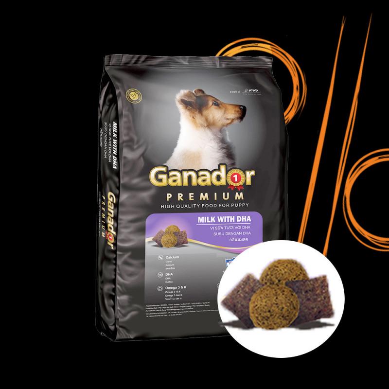 Thức ăn cho chó Ganador
