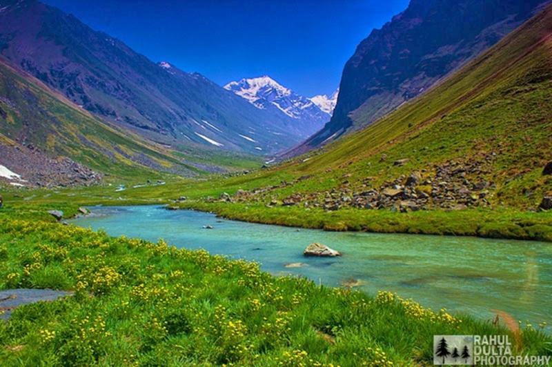 Thung lũng hoa ở Uttarakhand sở hữu tới hơn 300 loài hoa khác nhau