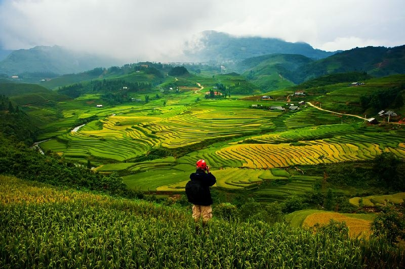 Đến Sapa vào mùa lúa chín hoặc mùa nước đổ để cảm nhận hết vẻ đẹp của đất trời