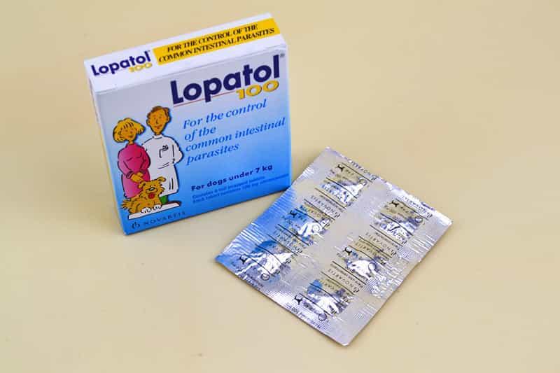 Thuốc tẩy giun chó Lapatol
